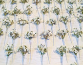 Dried flower hair pins PASIPHAE Gypsophila babys breath wedding