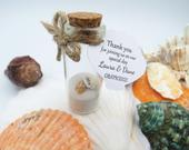 Mini Beach Wedding Favours Sea shell favors Nautical Table Decoration Wedding Gift Wedding favour Party Favour