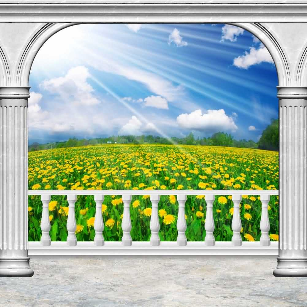 Arch Sky Cloud Flower Photography Computer Print Background Arches Or Pillars Theme Digital Backdrops Hxb-090