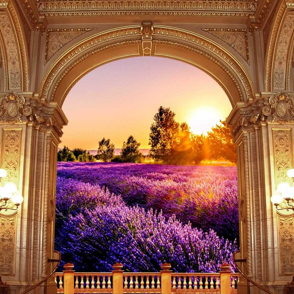 Arch Flower Sunset Tree Photography Computer Print Background Arches Or Pillars Theme Digital Backdrops Hxb-096