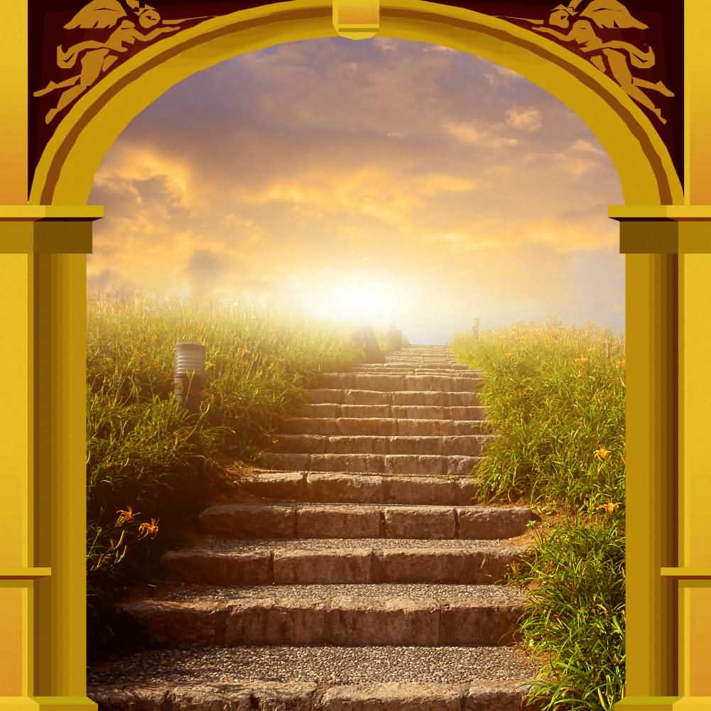 Arch Stairs Plant Sunset Photography Computer Print Background Arches Or Pillars Theme Digital Backdrops Hxb-112
