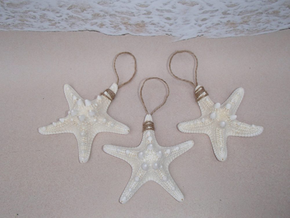 Set Of 3 White Knobby Starfish Ornaments - Beach Wedding Favors Nautical Christmas Ornament Favor Star Fish Sand