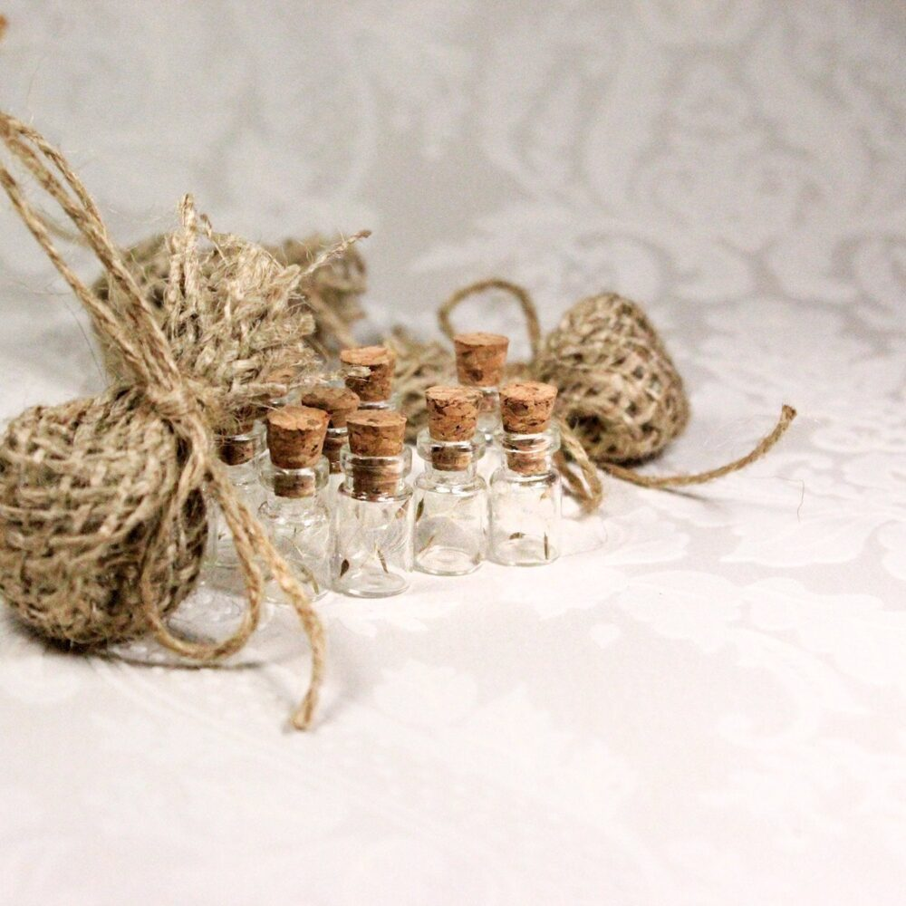 Wish Wedding Favor Bag - Dandelion Seeds Favors Flower Mini Bottle Terrarium White Baby Shower Burlap Bags Fields