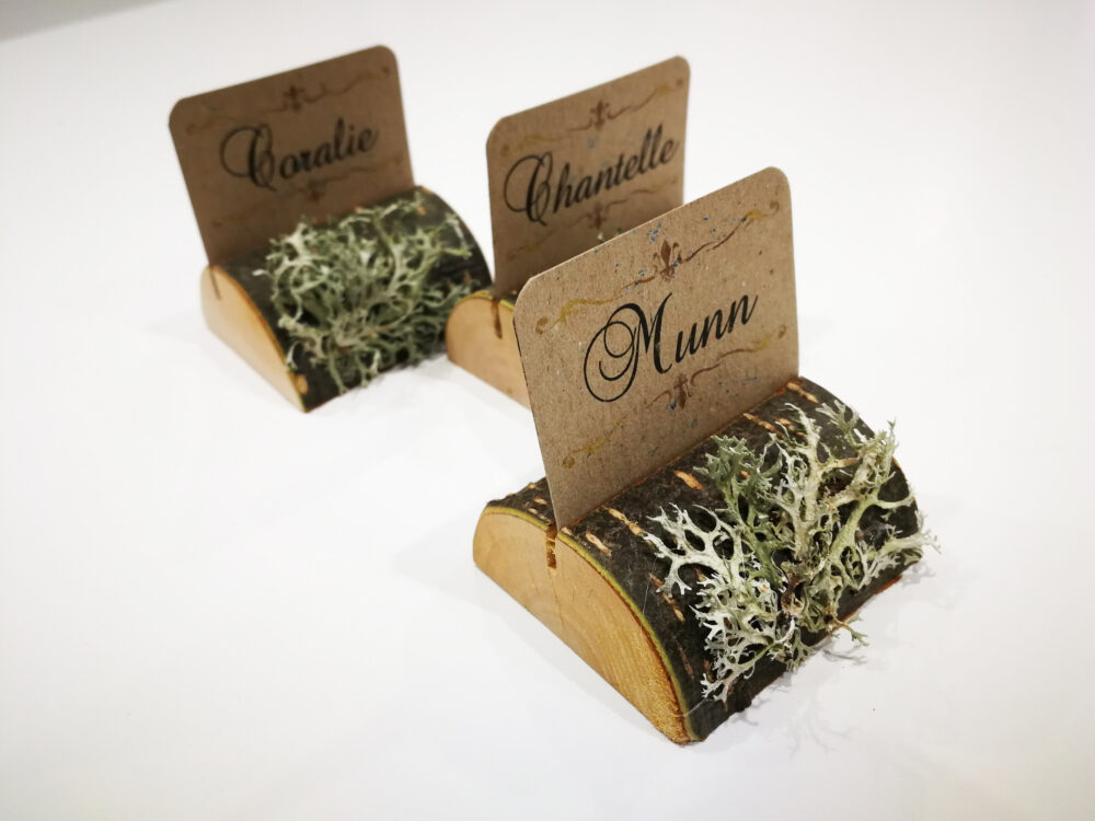 Lichen Moss Name Card Holder, Wedding Holders, Rustic Place Cards, Wooden Table Setting Natural