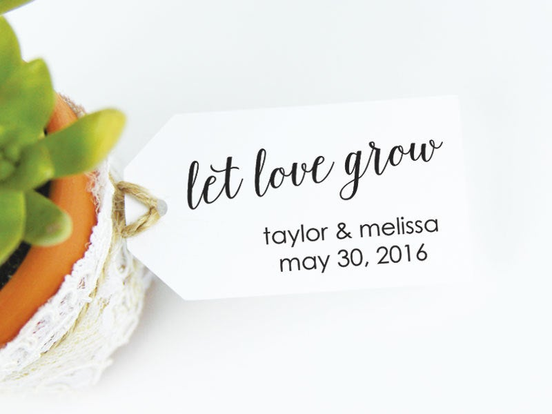 Let Love Grow - Wedding Favor Tags Succulent Favors Plant Seed Party Medium
