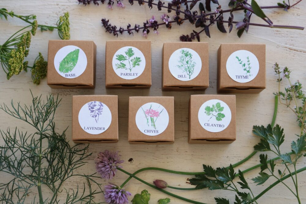 Herb Wedding Favors, Set Of 7 Herb Garden Kits, Party Favor, Gardening, Annual Seeds, Eco Friendly Gift Seed Kit, Custom Favors