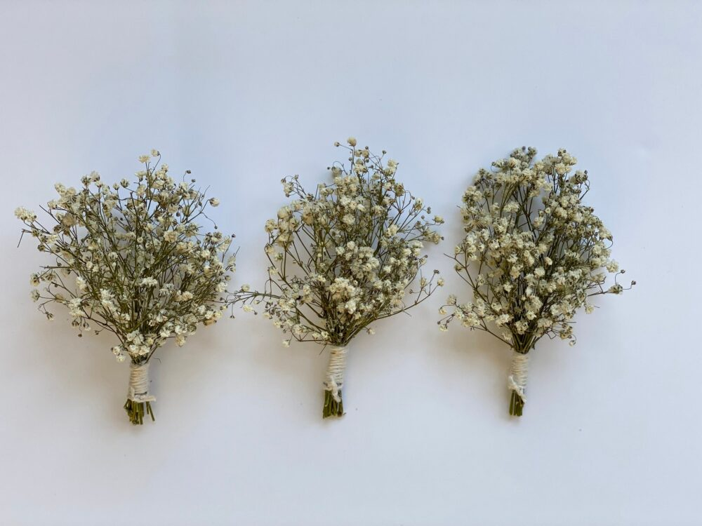 Dried Baby Breath Boutonnières-Wedding Boutonnière - Baby Girl Shower Table Decoration-Natural Dried Boutonnieres