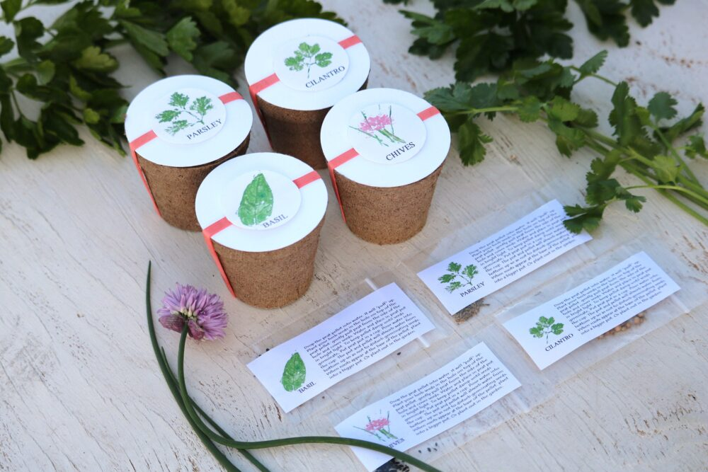 Herb Wedding Favors, Set Of 4 Herb Kits, Garden Party Favor, Annual Seeds, Basil, Chives, Parsley, Cilantro Eco Friendly Gift Seed Kit